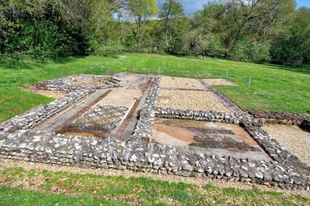 Roman Villa Mosaic Floor